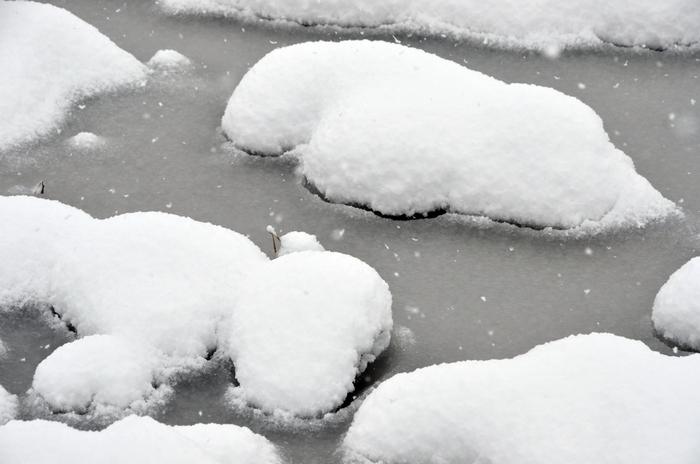 田の雪-3