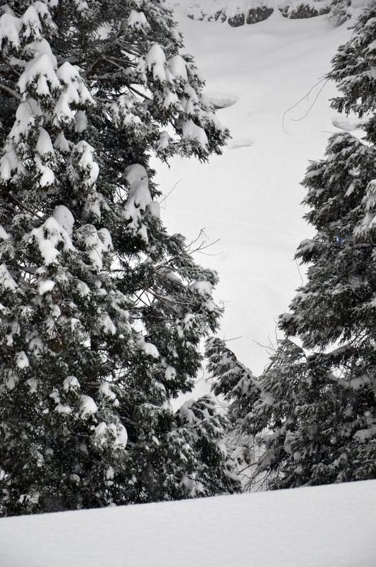 山里 雪-2