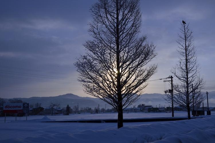 雪の朝焼け-3
