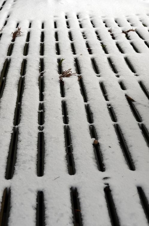 雪のデッキ-1