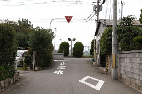 EOS_2299.jpg