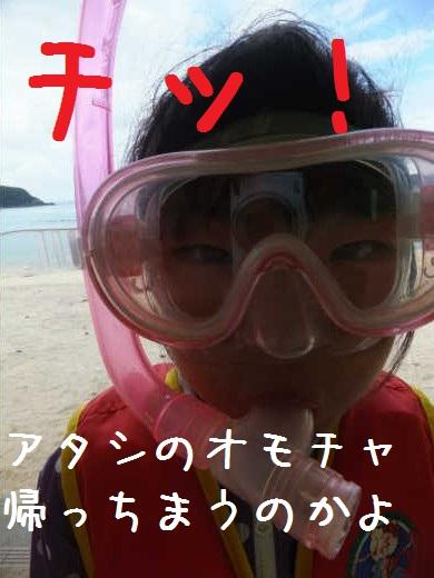 blog12082113.jpg