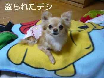 blog2012042602.jpg