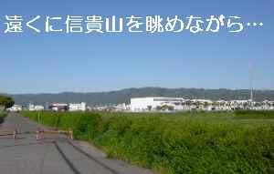 blog2012042701.jpg