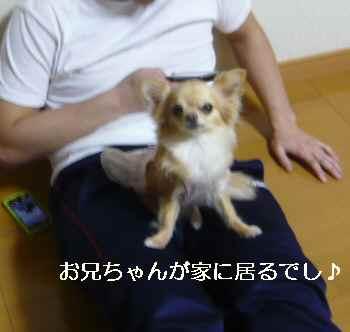 blog2012042911.jpg