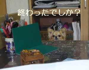 blog2012050203.jpg