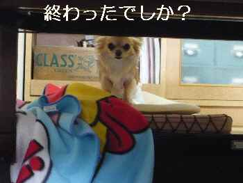 blog2012050204.jpg