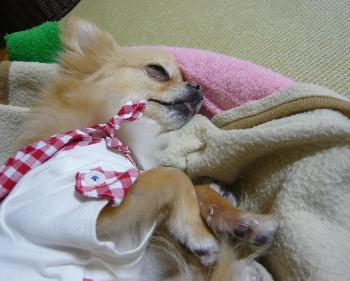 blog2012050803.jpg