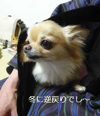 blog2012051201.jpg