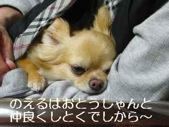 blog2012051801.jpg