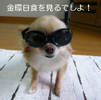 blog2012052101.jpg