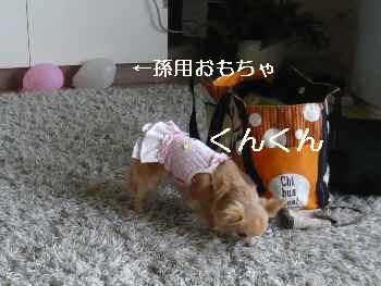 blog2012052201.jpg