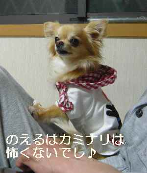 blog2012052905.jpg
