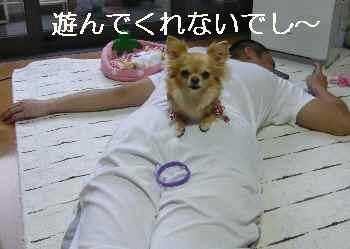 blog201205304.jpg