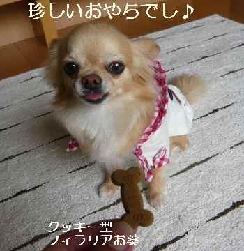 blog2012053106.jpg