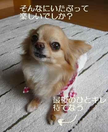 blog2012053107.jpg