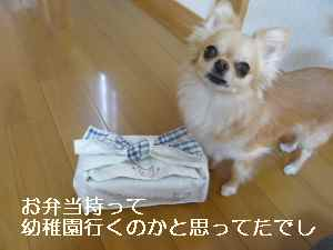 blog2012060304.jpg