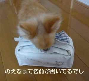 blog2012060305.jpg
