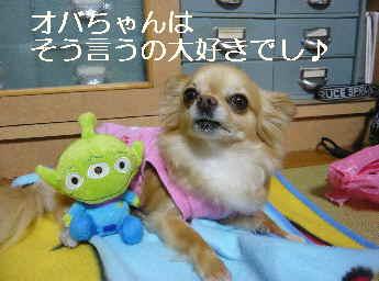 blog2012060704.jpg