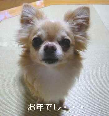 blog2012061103.jpg