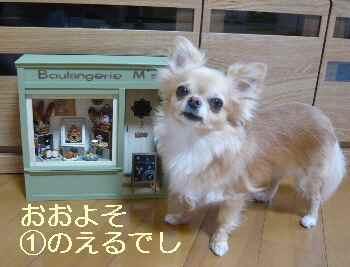 blog2012070201.jpg