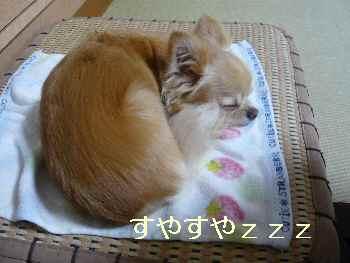 blog2012070304.jpg
