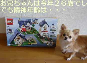 blog2012070502.jpg