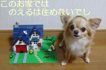 blog2012070605.jpg
