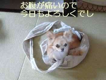 blog2012071101.jpg