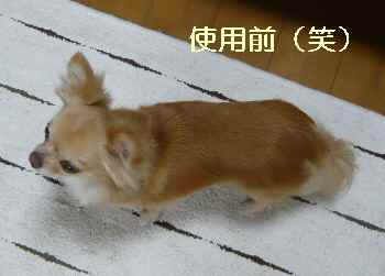 blog2012071201.jpg