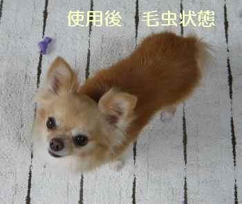 blog2012071202.jpg