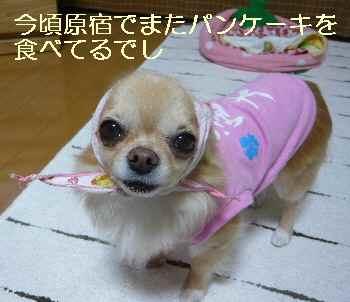 blog2012071401.jpg