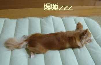 blog2012072304.jpg