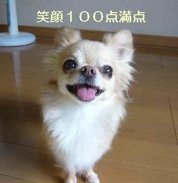 blog2012072605.jpg