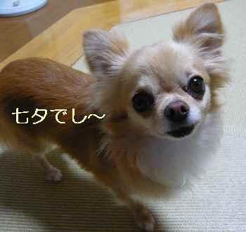 blog201207703.jpg
