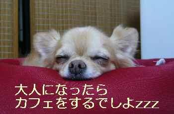 blog2012080301.jpg