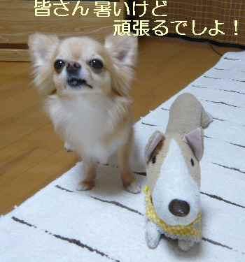 blog2012080604.jpg
