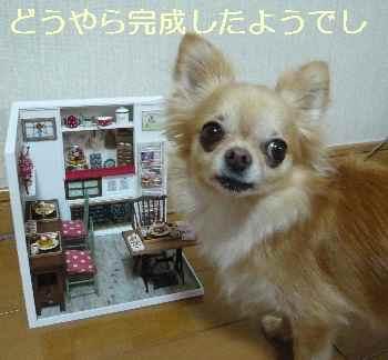 blog2012082001.jpg