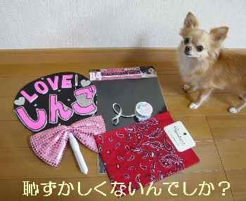 blog2012082601.jpg