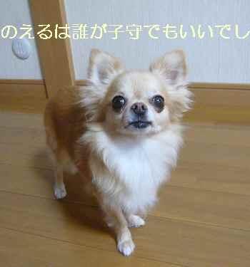 blog2012082901.jpg