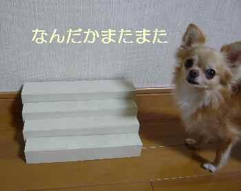 blog2012090401.jpg