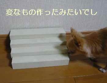 blog2012090402.jpg