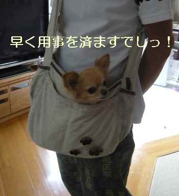 blog2012090601.jpg