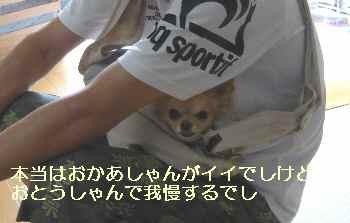 blog2012090602.jpg