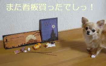 blog2012090605.jpg