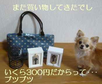 blog2012091101.jpg