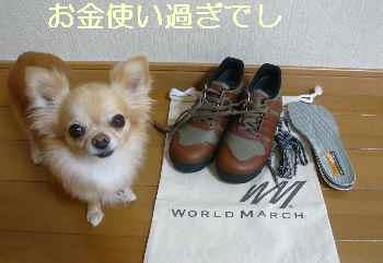 blog2012091201.jpg