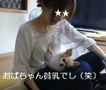 blog2012092502.jpg