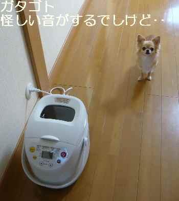 blog2012092701.jpg