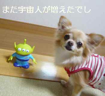 blog2012100201.jpg